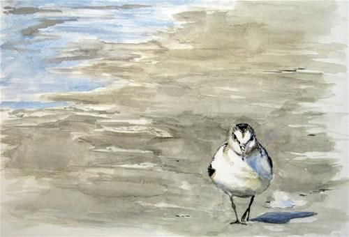 """Sanderling"" - Original Fine Art for Sale - © Ulrike Miesen-Schuermann"