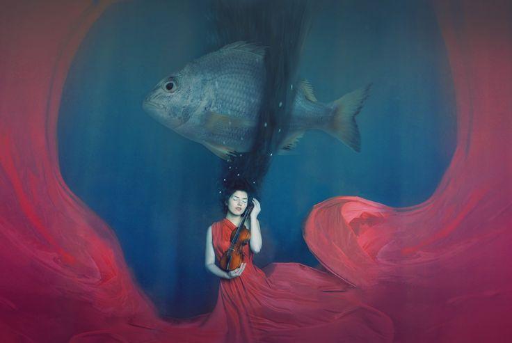 500px'te Katerina Plotnikova tarafından Untitled fotoğrafı