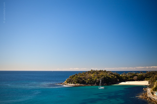 Shelly Beach - Manly