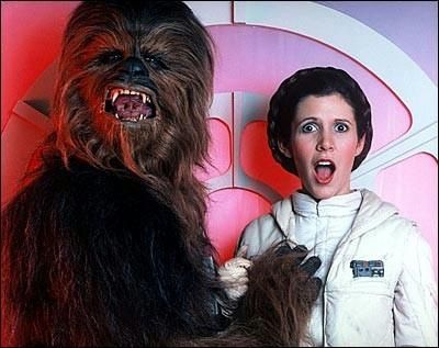 Chewy on Flickr - Photo Sharing!