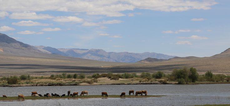 natural Western Mongolian landscape