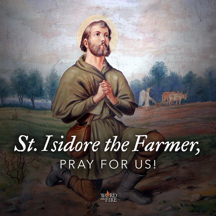 St. Isidore the farmer, model of simplicity and faith, pray for us!  #Catholic #pray #saintoftheday #prayforus #StIsidore