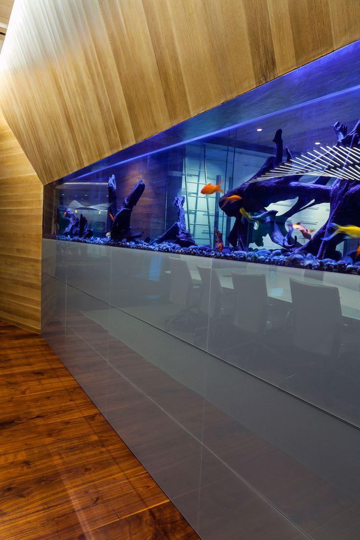 Fish aquarium utah - This Conference Room In Provo Utah Sports A Built In Fish Tank With Custom