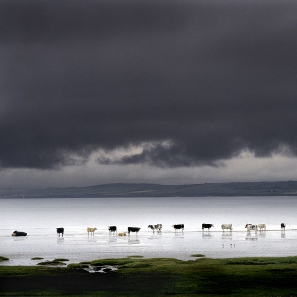Loch Indaal, Islay, Scotland Image by Charlie Waite