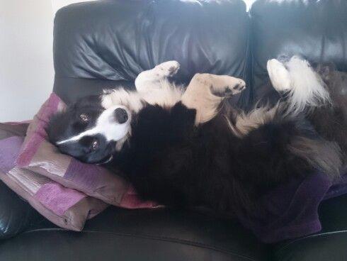 Comfy Tilly?