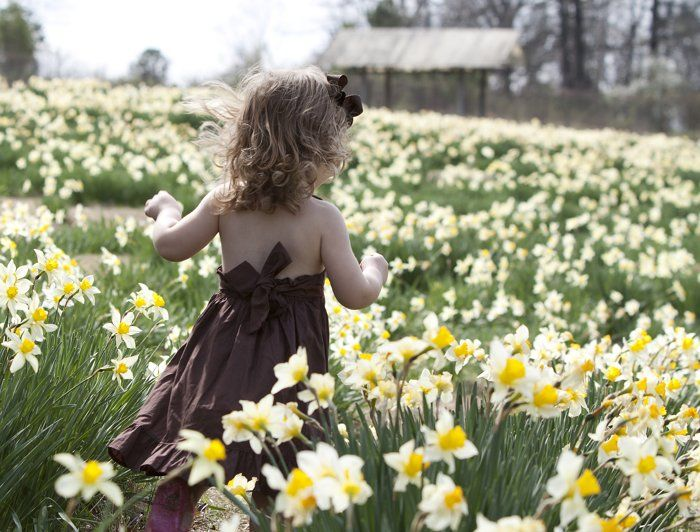 Arkansas: Wye Mountain Daffodil Festival by Eilish Palmer