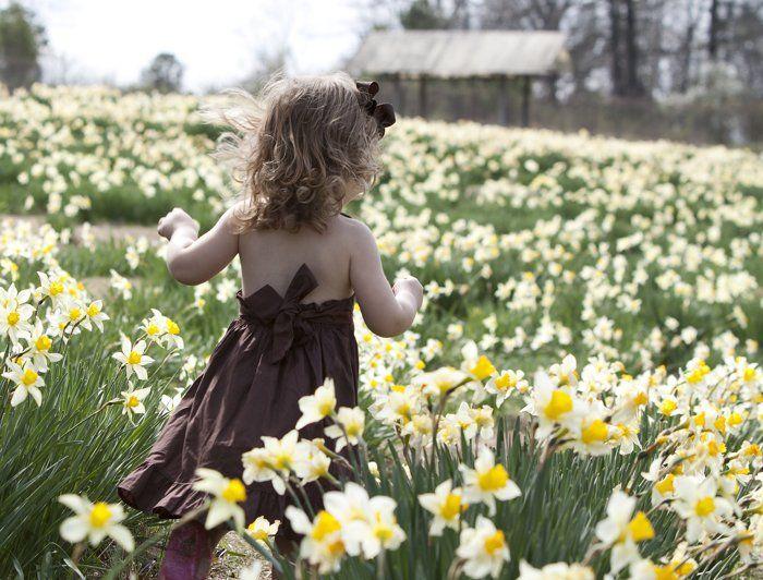 Arkansas: Wye Mountain Daffodil Festival by Eilish Palmer
