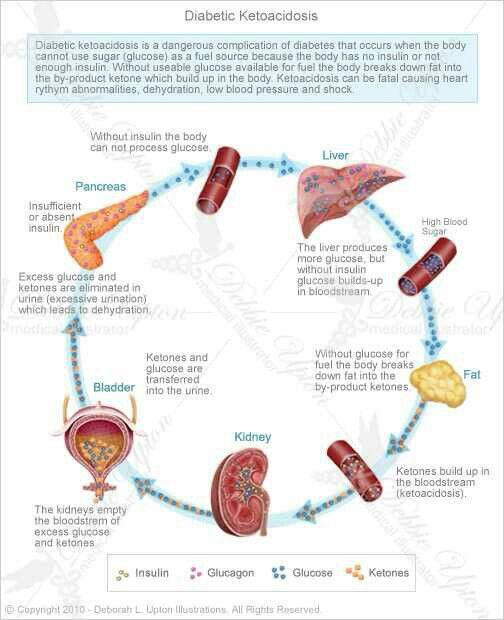 The Significant Effect of Diabetes Duration on Coronary ...