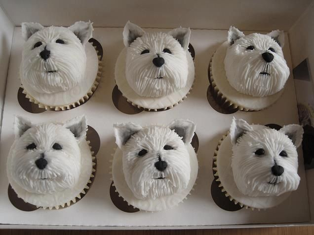 These would be great for cupcake day!
