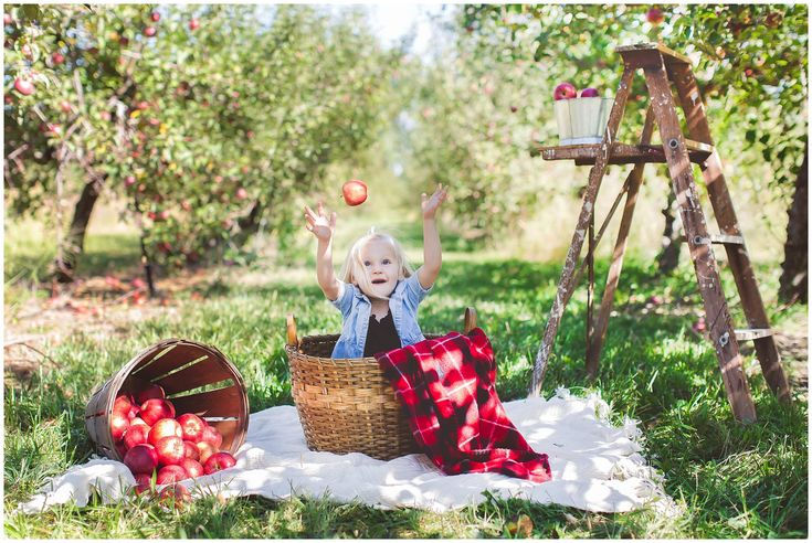 Fall family mini sessions in an apple orchard! Amazing mini session set up!!
