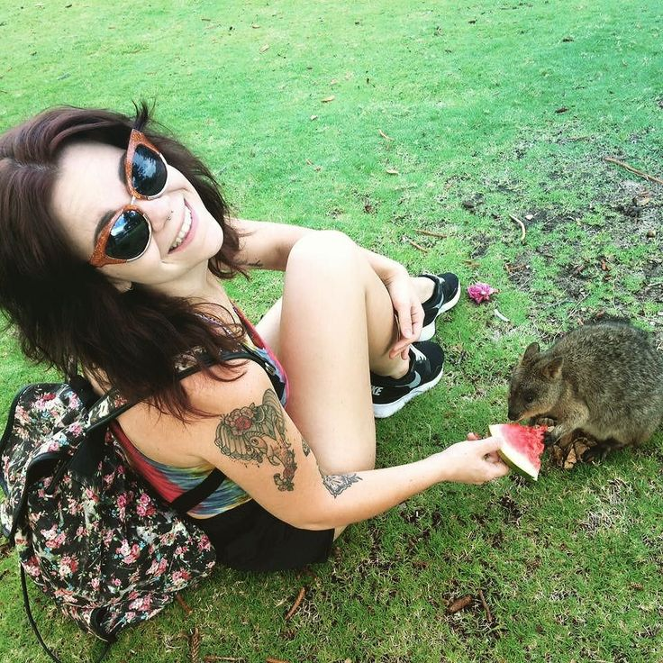 #feeding a little bubby #quokka at #rottnestisland was probably one of my favourite life moments.  It's so #little and #cute  #australianwildlife #perthlife #rotto #watermelon #tyedye #floral #zaraglasses #happydays #nike #tattoos #ink by ___chelseaolivia http://ift.tt/1L5GqLp