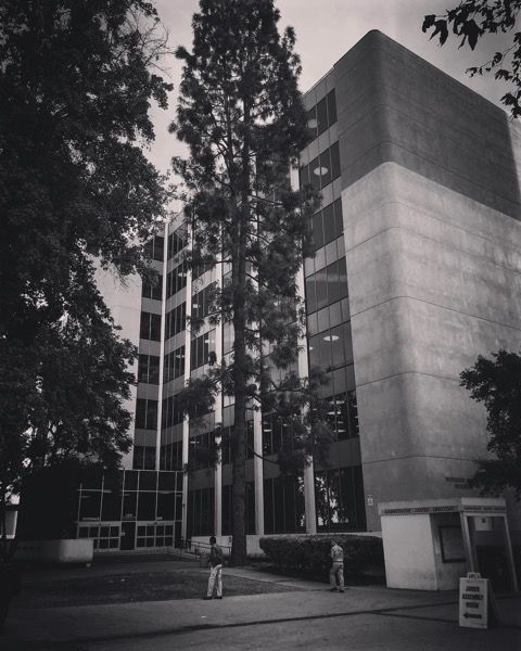 My Los Angeles 8 - LA Superior Court, Van Nuys, CA via Insatgram