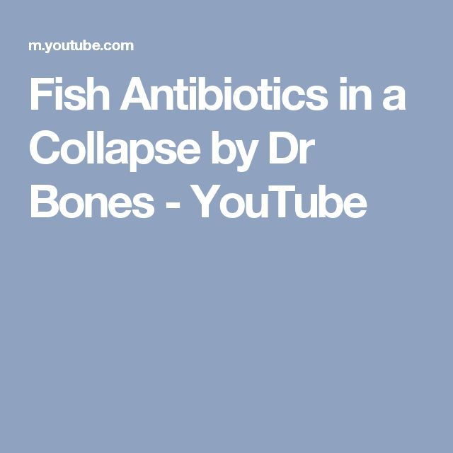 Fish Antibiotics in a Collapse by Dr Bones - YouTube