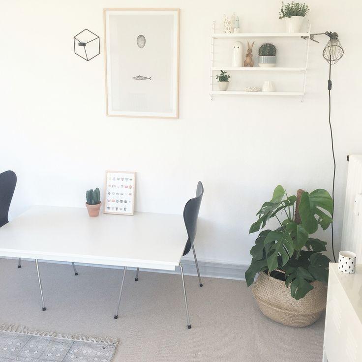 Fotoshoot in the livingroom.. Repost from Alfabetdyr Instagram