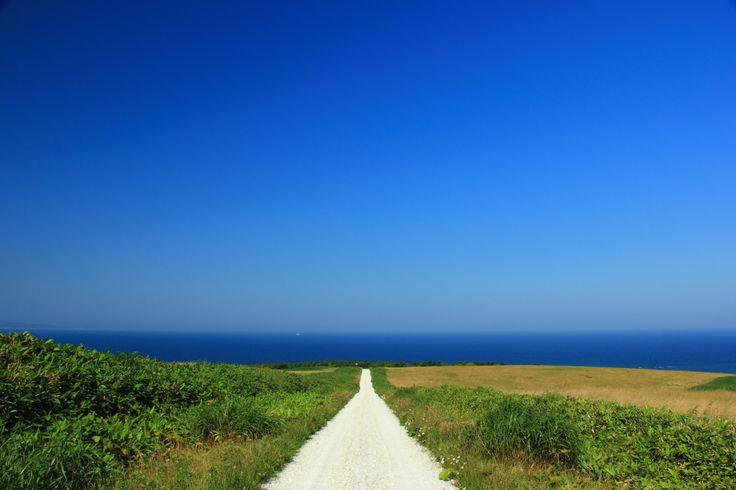 24. 野付半島のトドワラ 【 別海町 】 - 北海道観光におすすめな「至極の絶景」26選。言葉を失うほどの美しさがここに…。 - Find Travel