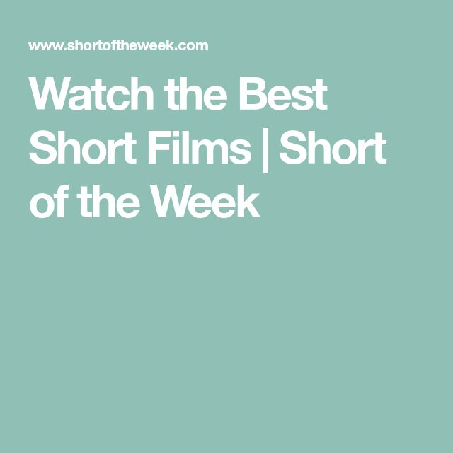 Watch the Best Short Films | Short of the Week