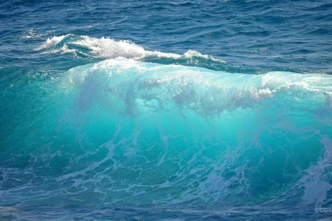 fale oceanu woda morska