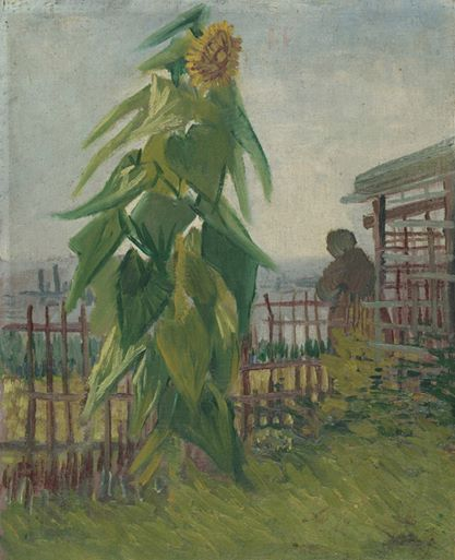 Art of the Day: Van Gogh, Garden with Sunflowers, Summer 1887. Oil on canvas, 42.5 x 35.5 cm. Van Gogh Museum, Amsterdam.