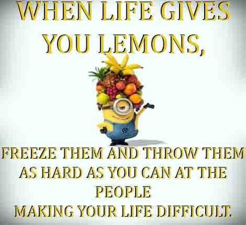 Despicable Me minions. Lemons, life, people. 。◕‿◕。 See my Despicable Me  Minions pins https://www.pinterest.com/search/my_pins/?q=minions