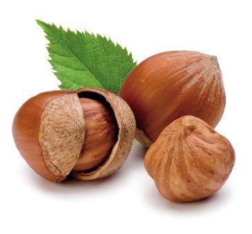 Una Nocciola tonda e gentile   #hazelnuts #nuts #nocciola #nut #fruit #news #fruttaebacche #eat #food