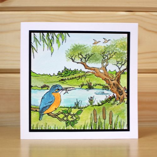CS134D 'Kingfishers' Clear set contains 15 stamps. Designed by Sharon Bennett for Hobby Art. This set was designed to be used alongside CS128D Riverside. Card made by Jenny Mayes