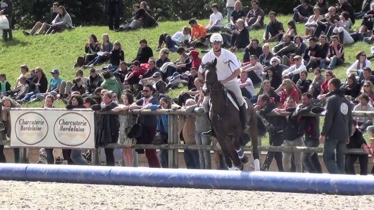 Alltech FEI World Equestrian Games 2014 - #HorseBall Presentation #WEG2014 #Normandy2014