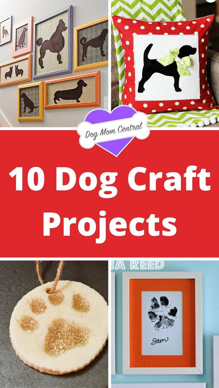 These 10 dog-themed craft projects are so easy, anyone can do them. Which is great because it's a perfect way to add a personalized touch to your home.