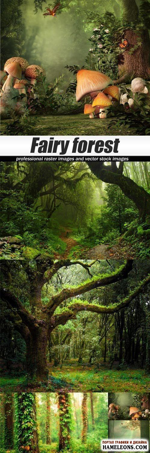 Сказочный лес: раскидистые зеленые деревья, густая трава, большие грибы, птичка, бабочка - растровые фоны | Fairy forest