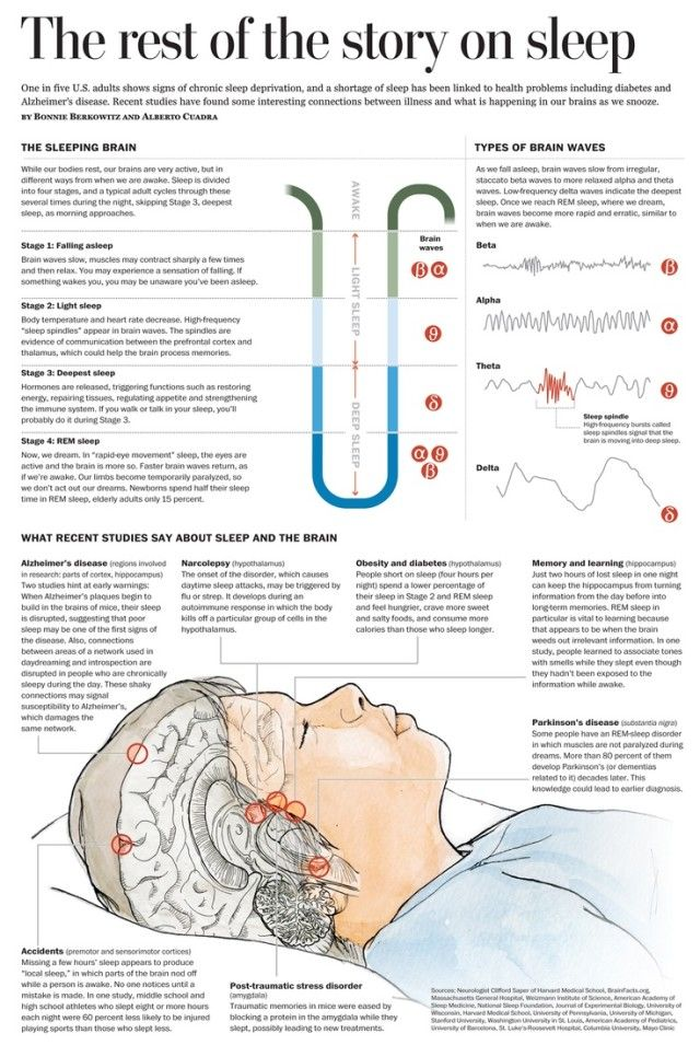 Why Sleep is Important [Infographic] - http://www.bestinfographics.co/why-sleep-is-important-infographic/