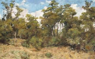 11 FREDERICK McCUBBIN (1855 – 1917) GUM TREES - MT MACEDON, 1904 oil on canvas 30.0 x 47.0 cm  Нажми на каталог,мудило! signed and dated lower left: F McCubbin. / 190...