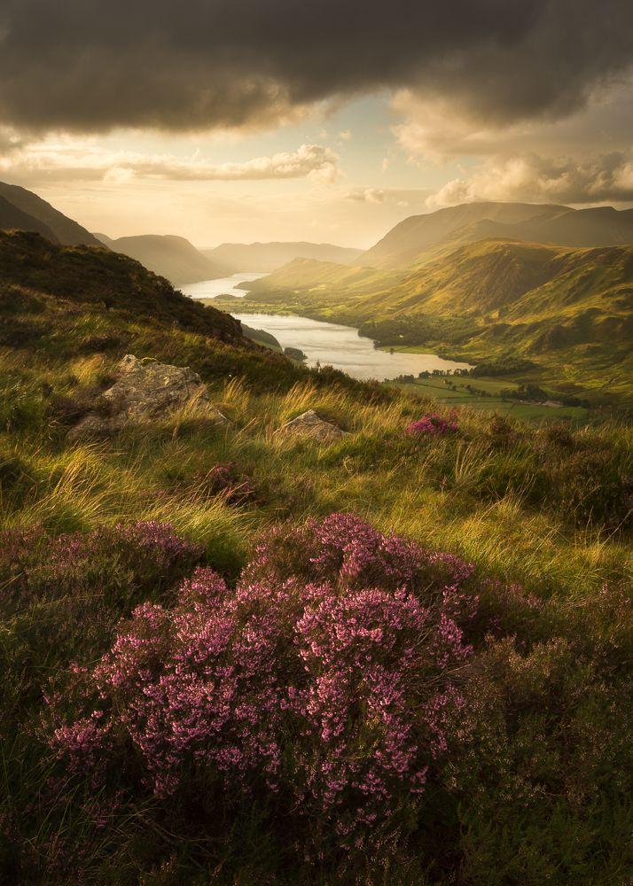 Buttermere Bloom Lens District Lake District Landscape Photography Stuart Mcglennon Cool Places To Visit Lake District Lake Landscape