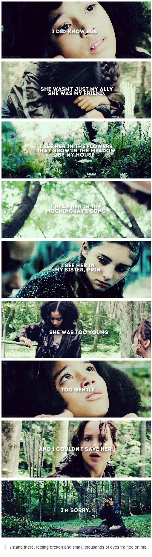 """I did know Rue. She wasn't just my ally, she was my friend. I see her in the flowers that grow in the meadow by my house. I hear her in the Mockingjay's song. I see her in my sister, Prim. She was too young, too gentle. And I couldn't save her. I'm sorry."" I stand there, feeling broken and small, thousands of eyes trained on me."