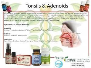 Tonsils and Adenoids--essential oil uses