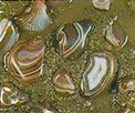 Lake Superior Agates    My husband and I spent tranquil hours searching for agates on our honeymoon,