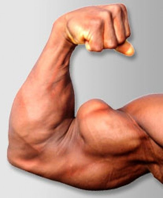 Hidden secrets professionals use to develop BIG ARMS! Triceps, biceps, and forearms make up the arms. Pump hard to get maximum results.