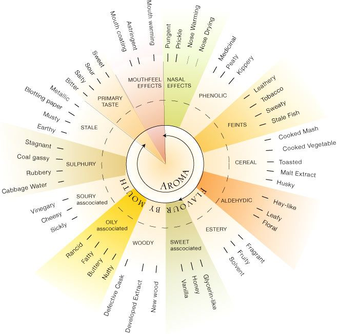 Whisky Flavour Wheel as devised by the Scotch Whisky Research Institute.