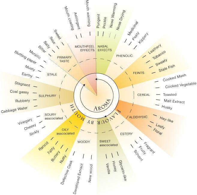 Sensory Wheel