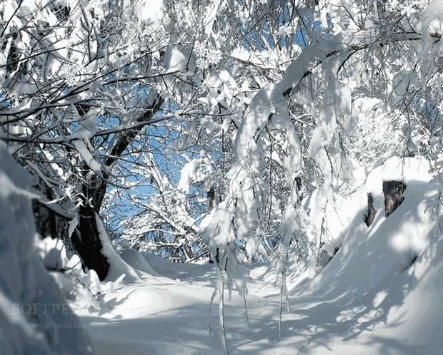 313 best snow images on pinterest strong frozen and - Free screensavers snowflakes falling ...