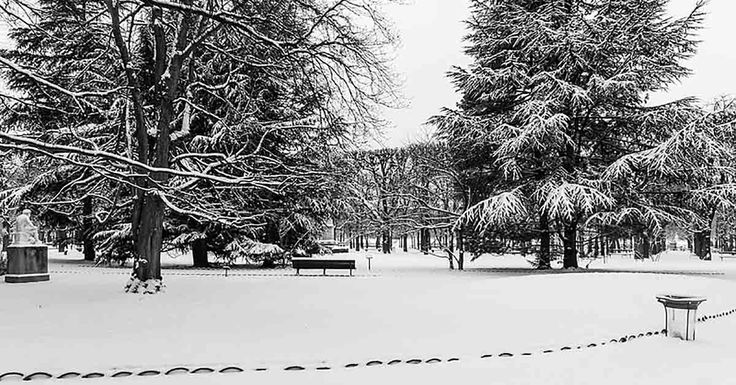 Il neige déjà au Luxembourg et en Belgique ! - https://www.le-lorrain.fr/blog/2017/11/12/neige-deja-luxembourg-belgique/