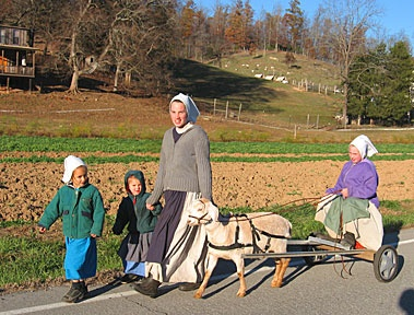 lobelville girls The city of lobelville, located in northern perry county, was settled by a frenchman herry de lobel in 1854 hence, the name of the city, which was then called lobelsville the earliest settlement in perry county is tom's creek, which is part of the pineview community of lobelville.