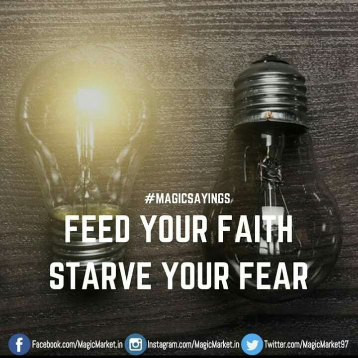 Feed it more #MagicSayings #Friday #Motivation #Inspiration #Quote #QuotesForLife #QuotesToLiveBy #MotivationalQuote #inspirationalQuote