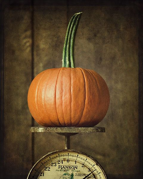 Coffee Table Stonegable: 581 Best Images About Autumn Decorating Ideas On Pinterest