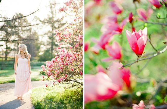 Belle Lumiere - Alison Kamper - The Find Lab - Mamiya 645 - Ektar 100  http://www.bellelumieremagazine.com/like-a-tree-that-blooms/
