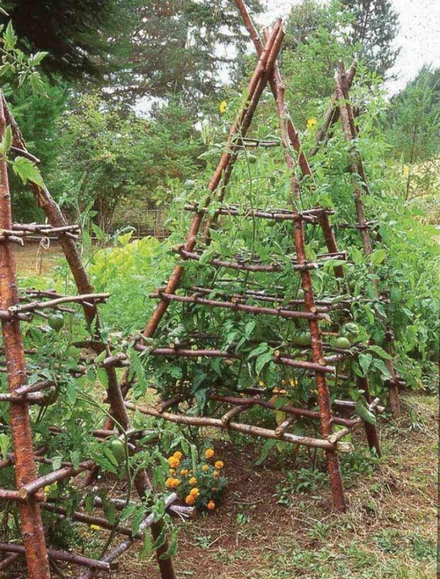 The 25 best Garden trellis ideas on Pinterest Trellis ideas