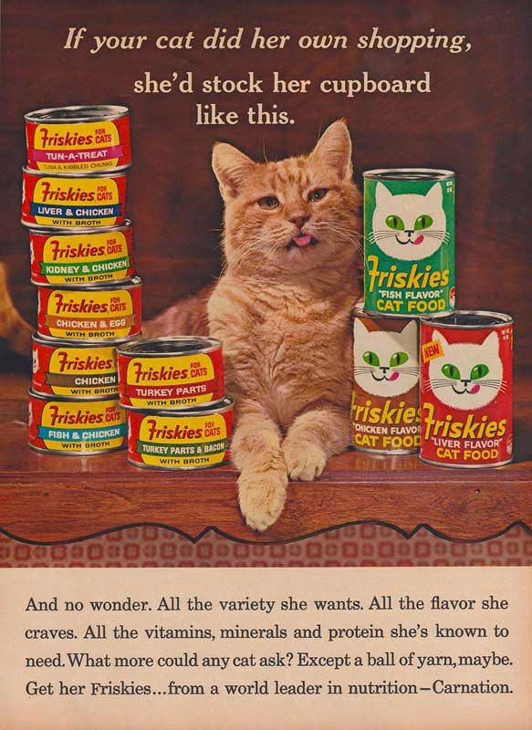 Cat Food Commercial S