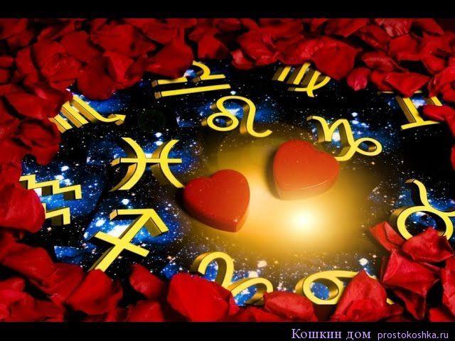 Любовный гороскоп на май 2016 Май 2016 может порадовать многих из вас приятными сюрпризами, хорошим настроением и удачными знакомствами. В этом месяце сильная Венера будет идти по своему родному знаку Тельца и вплоть до выхода из него (24 мая) не будет делать никаких негативных аспектов. http://prostokoshka.ru/magiya/lyubovnaya-magiya/lyubovnyiy-goroskop-na-may-2016.html