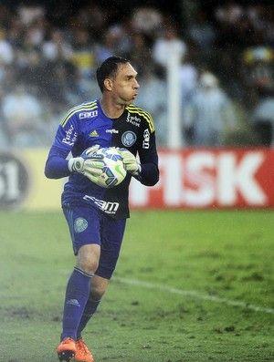 Com muitos desfalques, Palmeiras terá teste de fogo contra o Santos