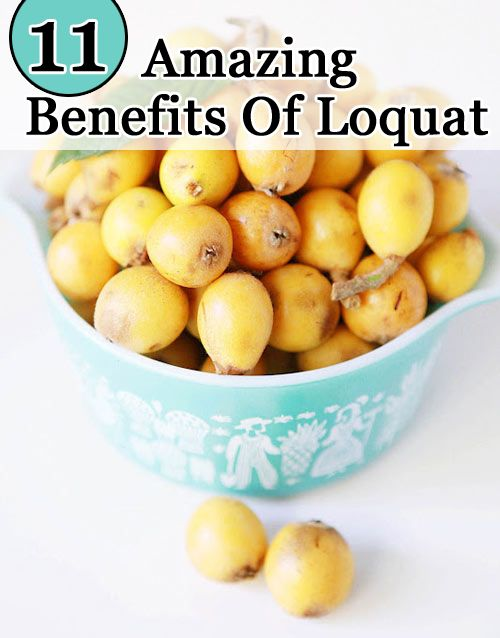 11 Amazing Benefits Of Loquat :Loquat fruit benefits are high as they are an excellent source of Vitamin A, Vitamin B and C. www.greennutrilabs.com