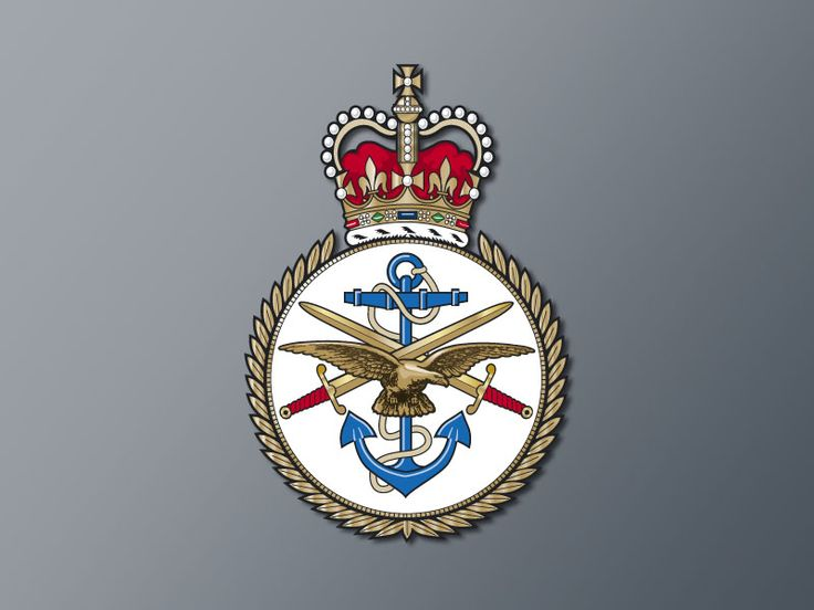 Defence Intelligence Agency UK OVERARCH HM Crown Carroll Trust National Security Case