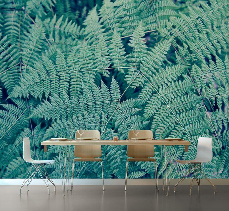 Teal sensation Ferns Wallpaper © Natascha van Niekerk Fine Art Photography as home decor. Custom photographic wallpaper.